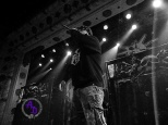 Hatebreed 12.03.2017 Feel free to share around but DO NOT remove watermark and credit must be given if shared.